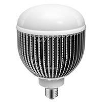 30W LED Globe Bulbs